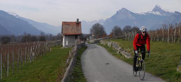RR-Bündner-Herrschaft-III_Malans_GR_Michi_Panorama1