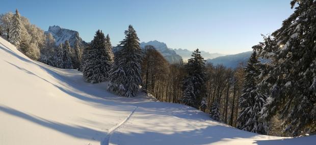 Neujahrs-Skitour 21