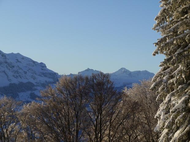 Neujahrs-Skitour 7