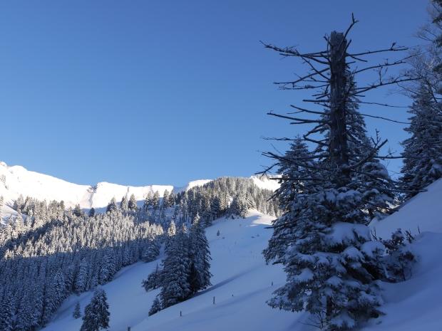 Neujahrs-Skitour 9